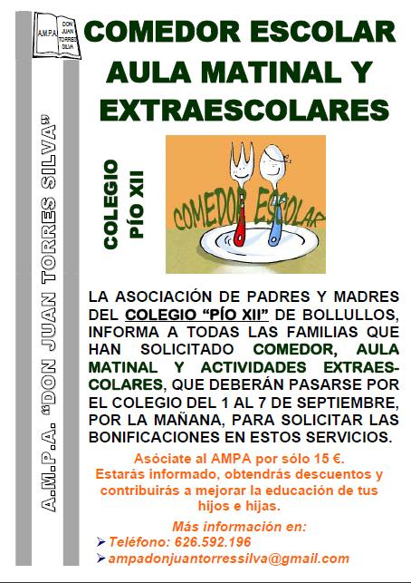 SERVICIOS DE AULA MATINAL, COMEDOR Y EXTRAESCOLARES